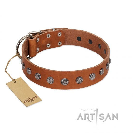 """Little Floret"" Fashionable FDT Artisan Tan Leather English Bulldog Collar with Silver-Like Adornments"