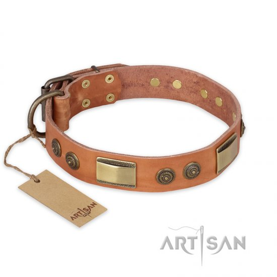 """Lost Desert"" FDT Artisan Leather English Bulldog Collar with Brass Decorations"