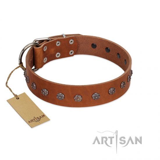 """Daintiness"" Designer Handmade FDT Artisan Tan Leather English Bulldog Collar with Silver-Like Adornments"