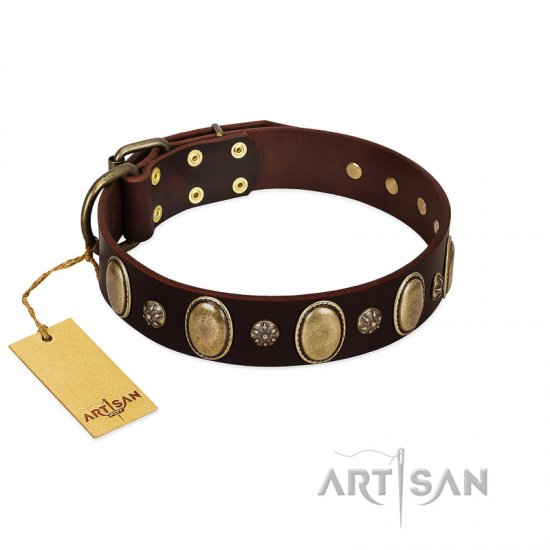 """Bronze Idol"" FDT Artisan Brown Leather English Bulldog Collar with Eye-catching Ovals and Small Studs"