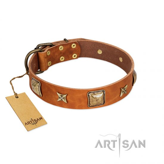 """Celtic Tunes"" FDT Artisan Tan Leather English Bulldog Collar Adorned with Stars and Squares"