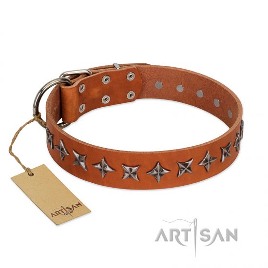 """Star Trek"" FDT Artisan Tan Leather English Bulldog Collar Decorated with Stars"