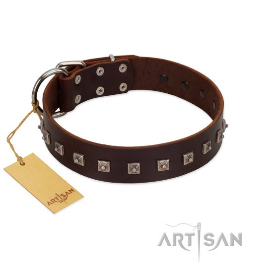 """Kingly Grace"" FDT Artisan Brown Leather English Bulldog Collar with Silver-like Dotted Studs"