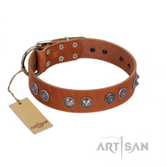 """Silver Necklace"" Incredible FDT Artisan Tan Leather English Bulldog Colar with Silver-Like Adornments"