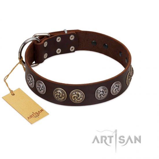 """Treasure Hunter"" FDT Artisan Brown Leather English Bulldog Collar with Old-Bronze-like and Silvery Medallions"
