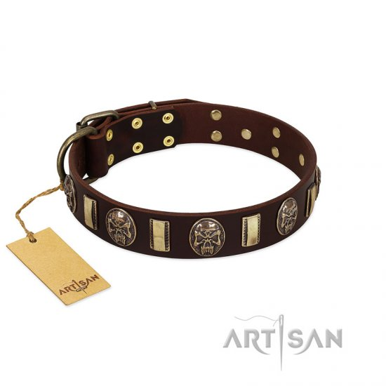 """Skull's Adventure"" FDT Artisan Brown Leather English Bulldog Collar with Plates and Ovals"