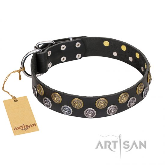 """Romantic Breeze"" FDT Artisan Daily Walking Black Leather English Bulldog Collar"
