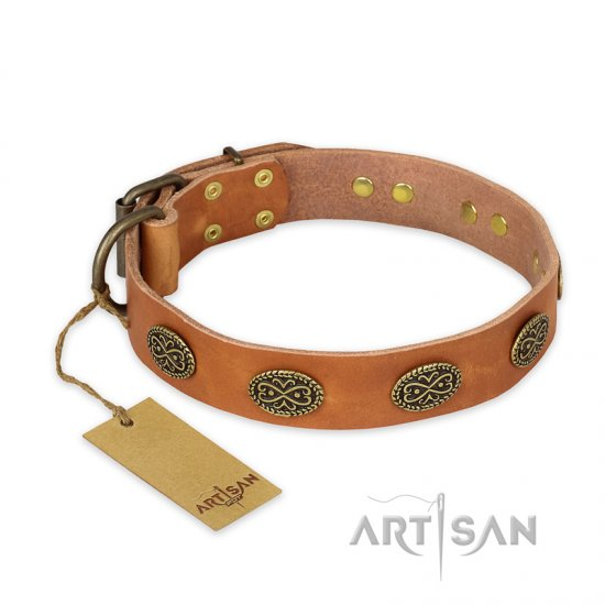 """Magic Amulet"" FDT Artisan Tan Leather English Bulldog Collar with Oval Studs"