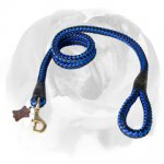 Bright Nylon English Bulldog Leash for Professional Training