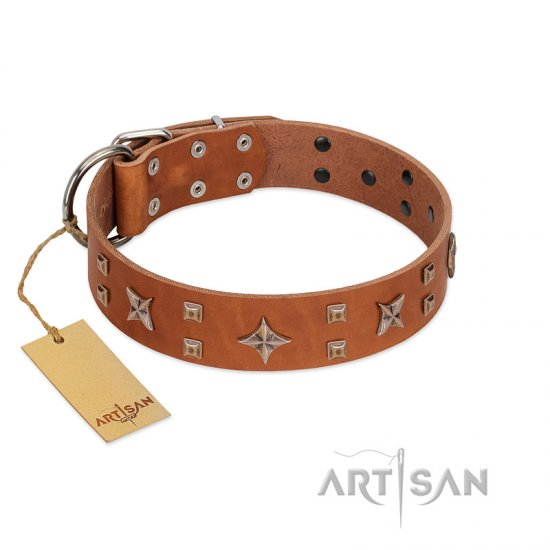 """Dreamy Gleam"" FDT Artisan Tan Leather English Bulldog Collar Adorned with Stars and Squares"