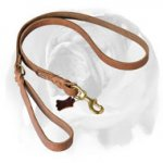 English Bulldog Braided Design Professional Leather Dog Leash
