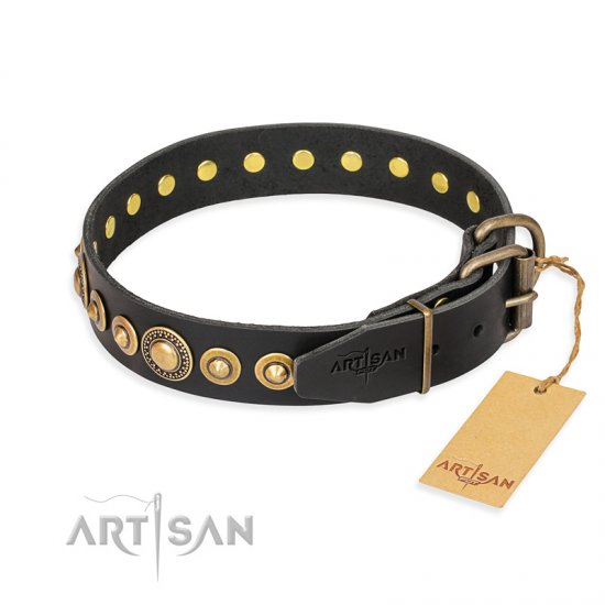 """Gold Mine"" FDT Artisan Black Leather English Bulldog Collar with Amazing Bronze-Plated Round Studs"