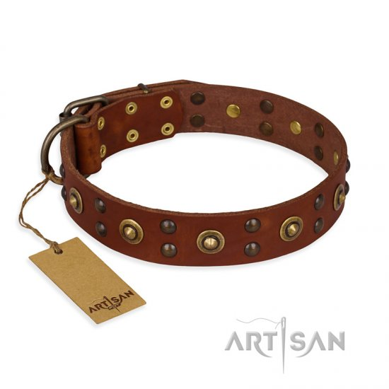 """Unfailing Charm"" FDT Artisan Studded Tan Leather English Bulldog Collar - Click Image to Close"