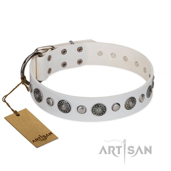 """Fluff-Stuff Beauty"" FDT Artisan White Leather English Bulldog Collar with Silver-like Studs and Conchos"