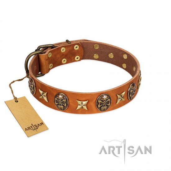 """Rockin' Doggie"" FDT Artisan Tan Leather English Bulldog Collar Adorned with Stars and Skulls"