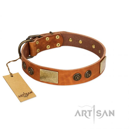 """Bronze Century"" FDT Artisan Tan Leather English Bulldog Collar with Plates and Brooches with Cool Ornament"