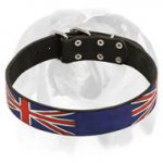English Bulldog Leather Dog Collar Special Edition with UK Flag