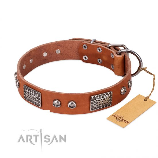 """Sparkling Skull"" FDT Artisan Tan Leather English Bulldog Collar with Old Silver Look Plates and Skulls"