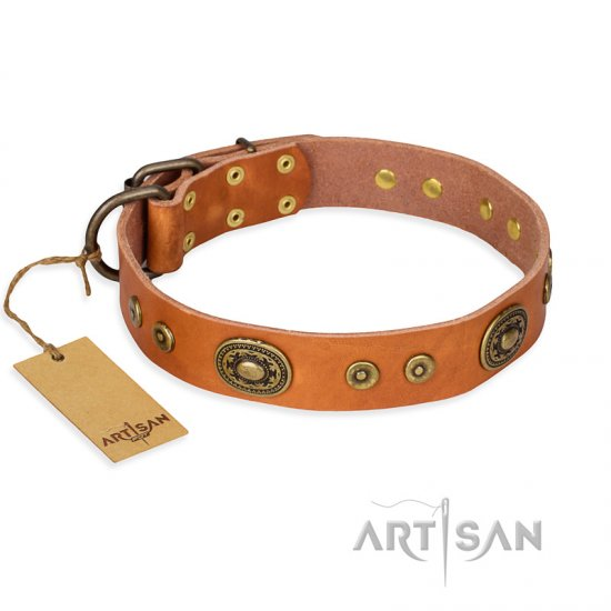 """Dandy Pet"" FDT Artisan Handcrafted Tan Leather English Bulldog Collar"