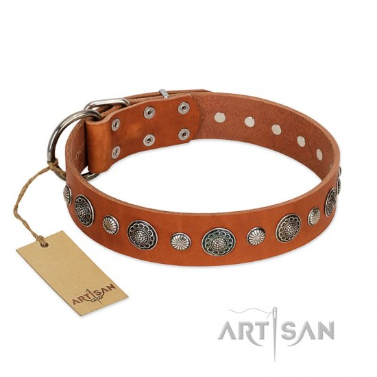 """Natural Beauty"" FDT Artisan Tan Leather English Bulldog Collar with Shining Silver-like Studs"