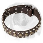 English Bulldog Riveted Full Grain Leather Dog Collar with Decorations