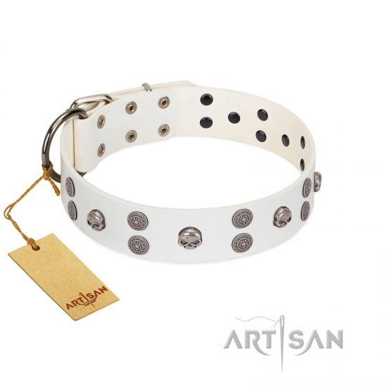 """Edgy Look"" FDT Artisan White Leather English Bulldog Collar with Silver-like Skulls"