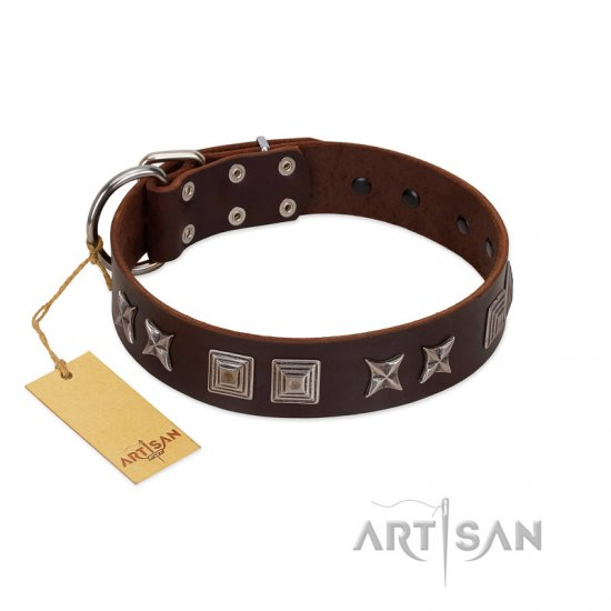"""Needle Stories"" Modern FDT Artisan Brown Leather English Bulldog Collar with Square Engraved Plates and Four-Point Stars"