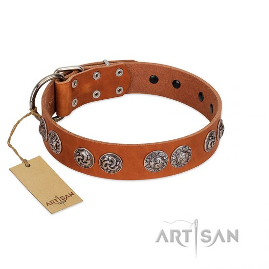 """Woofy Majesty"" FDT Artisan Tan Leather English Bulldog Collar with Round Silver-like Plates"