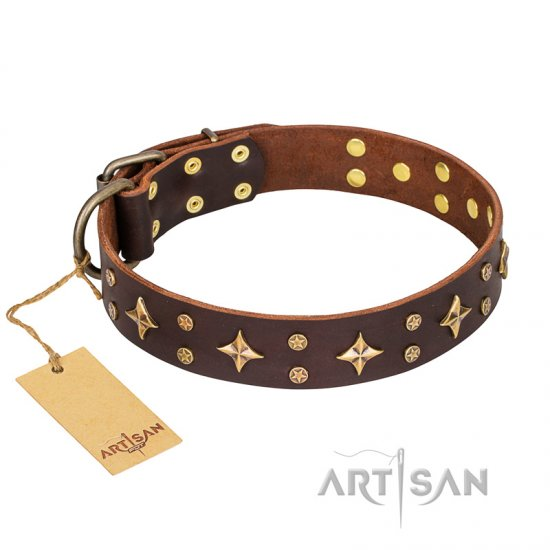 'High Fashion' FDT Artisan Embellished Brown Leather English Bulldog Collar