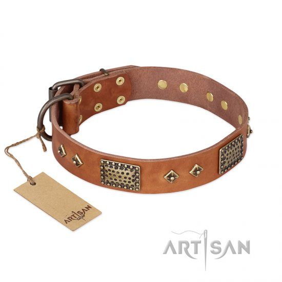 """Catchy Look"" FDT Artisan Decorated Tan Leather English Bulldog Collar"