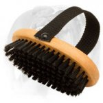 'Brush & Go' Bristle English Bulldog Brush for Everyday Grooming