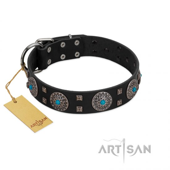 """Boundless Blue"" FDT Artisan Black Leather English Bulldog Collar with Chrome Plated Brooches and Square Studs"