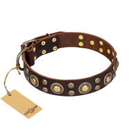 'Flower Melody' FDT Artisan Brown Leather English Bulldog Collar with Mixed Studs