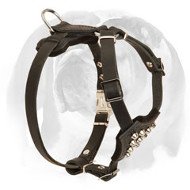 English Bulldog Genuine Leather Dog Harness with Cones for Puppies