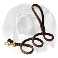 English Bulldog Exquisite Design Braided Leather Dog Leash