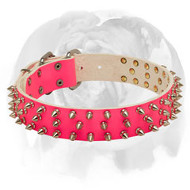 English Bulldog Pink Leather Dog Collar with 3 Rows of Spikes