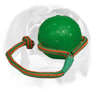 English Bulldog Rubber Ball for Chewing and Playing