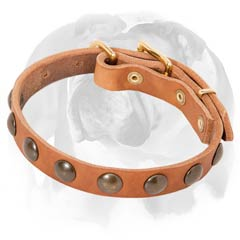 Soft Leather English Bulldog Collar For Puppies