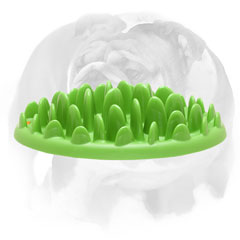"""Entertaining Grassy Tray"" - slow dog feeder for your English Bulldog"