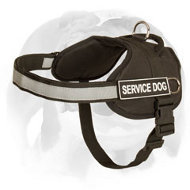 Professional English Bulldog Harness For Training And Walking With Reflective Strap