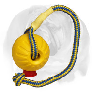 Interactive Dog Training Toy with Rope for English Bulldog
