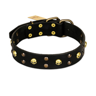 FDT Artisan 'Heavy Metal' Leather English Bulldog Collar with Skulls and Studs 1 1/2 inch (40 mm)