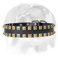 English Bulldog Leather Vintage Style �Caterpillar� Dog Collar