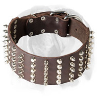 English Bulldog Extra Wide Pure Leather Dog Collar with Spikes and Cones