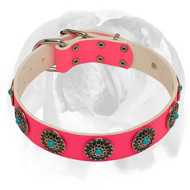 English Bulldog Tender Pink-Painted Leather Dog Collar with Decorations