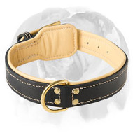 English Bulldog Nappa Padded Extra Soft Leather Dog Collar