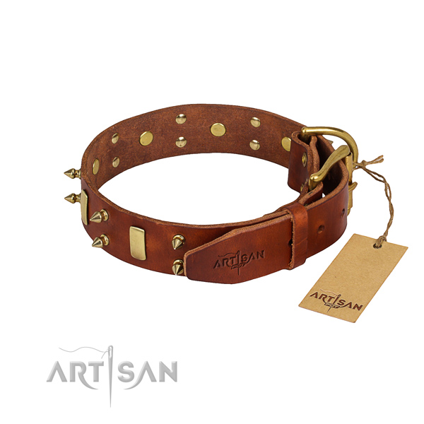 Heavy-duty leather dog collar with reliable details