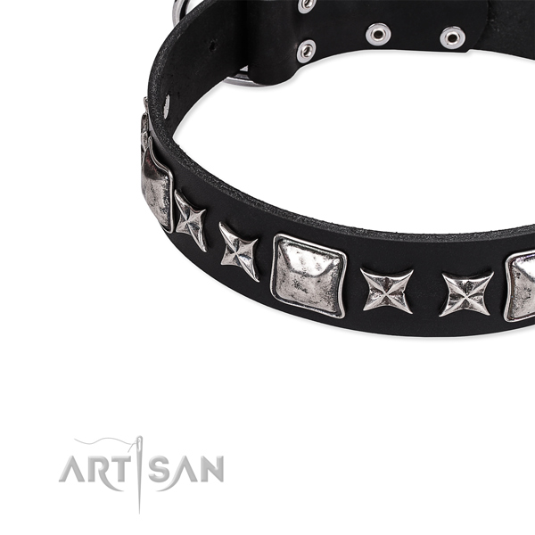 Full grain leather dog collar with adornments for everyday walking