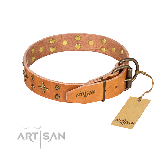 Daily walking full grain natural leather collar with studs for your pet