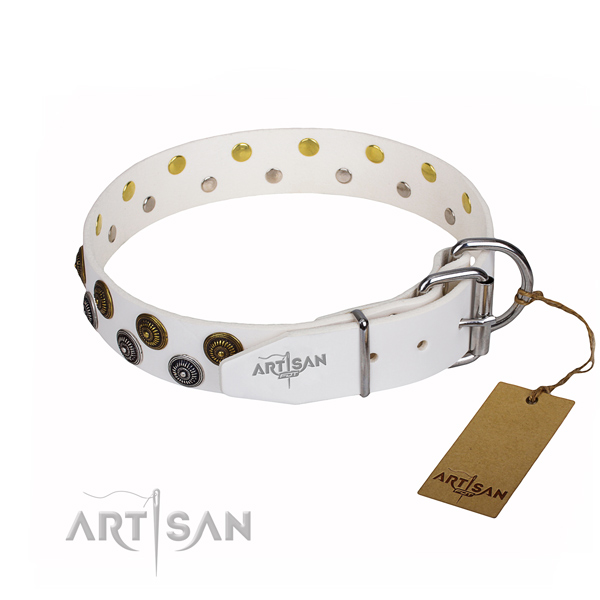 Stylish walking full grain leather collar with embellishments for your doggie